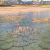Alkaline Lake Mud Cracks, Eastern Sierra