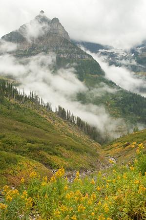 Fog on Glacier Peaks