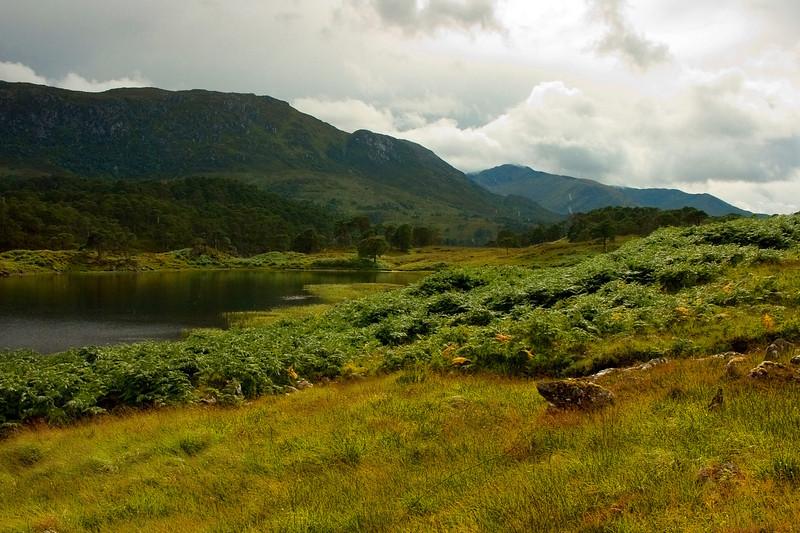 Glen Affric, Scotland