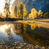 Yosemite Valley Autumn Light