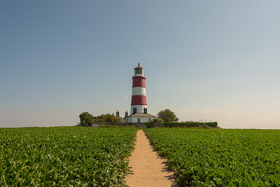 Path to Happisburgh Lighthouse