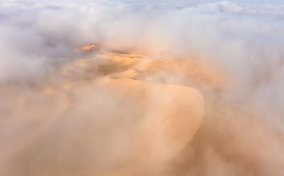 Foggy desert landscape.