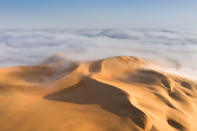 Top of the sand duneemerging from a cloud of fog.