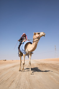 Man with his camel in a desert.