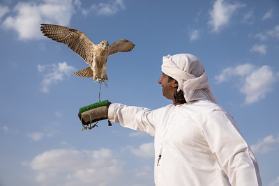 Man posing with his trained falcon.