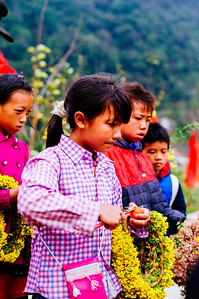 Vietnam, Northern Highlands, People