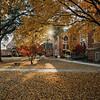 Mercer Campus in Fall