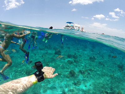 Snorkelling at Cozumel
