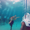 Diving with turtles in Cancun