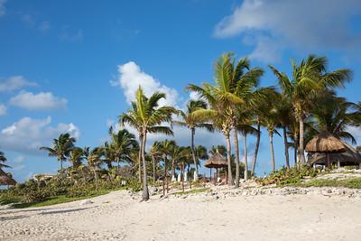 Tropical beachfront.