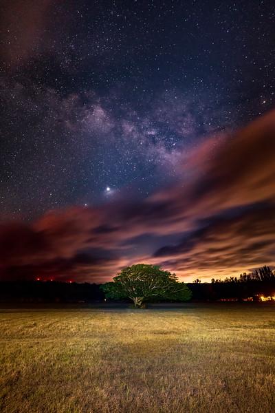 Stars over Laniakea