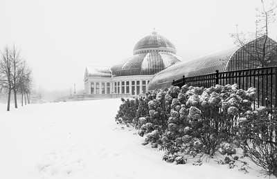 Snowy Conservatory
