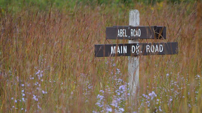 Crex meadows