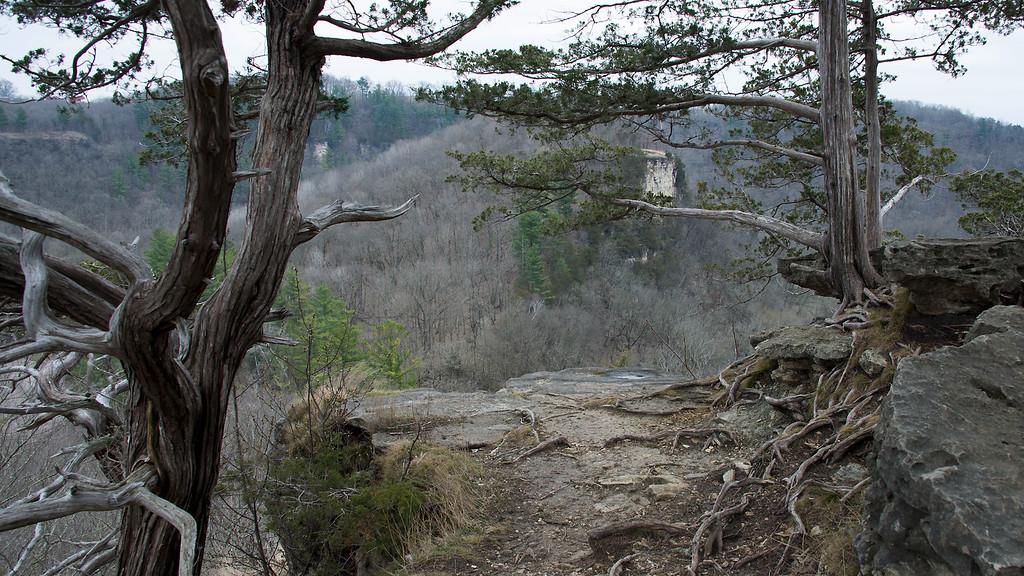Whitewater Bluffs
