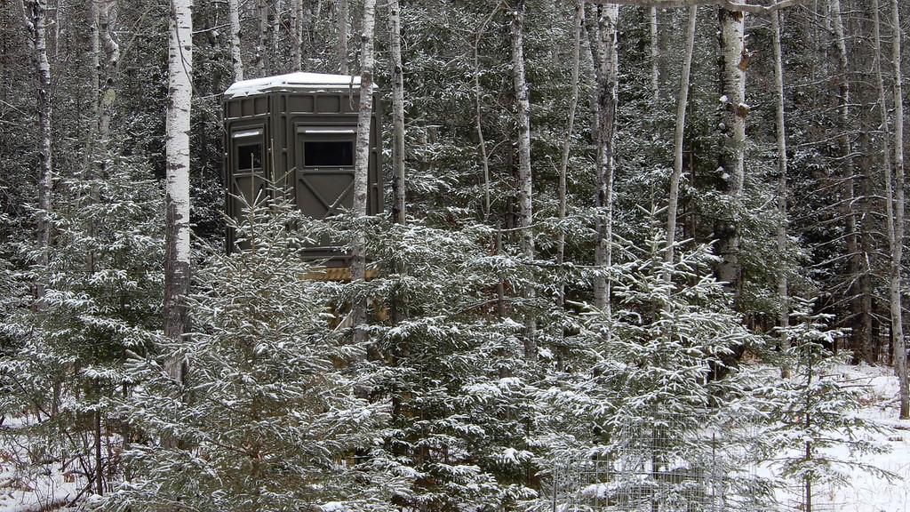 Deer Station