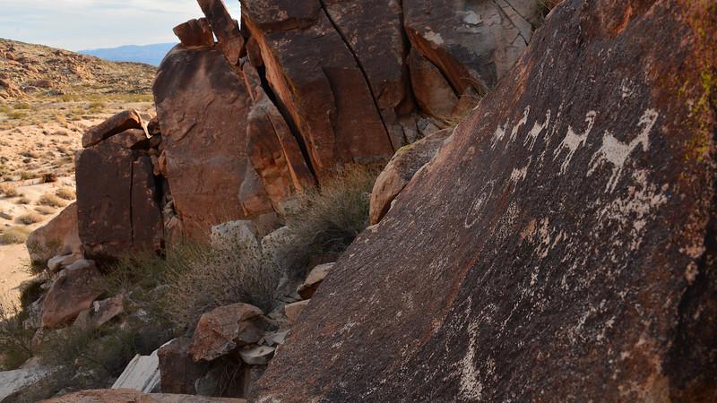 Grapevine Canyon Petroglyph
