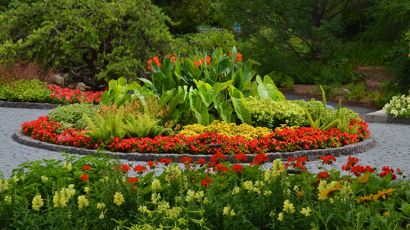 Flora arrangement