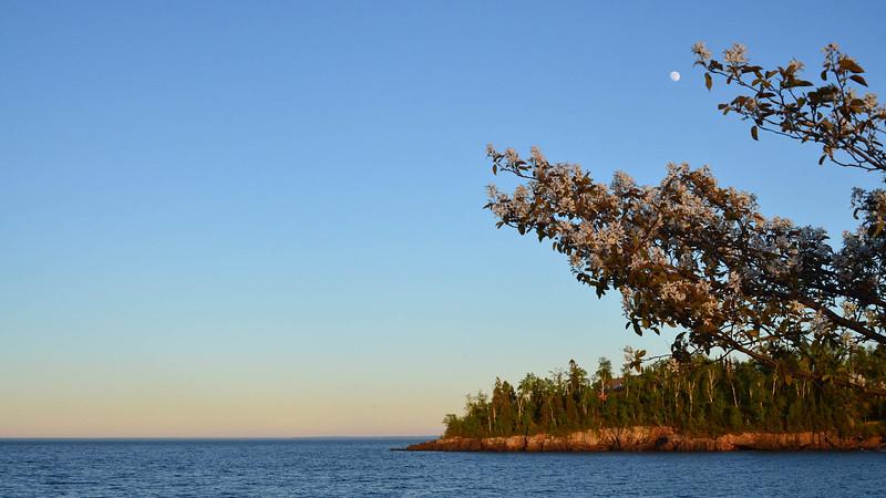 Moon over Flood Bay