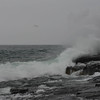 Stoney Point Waves