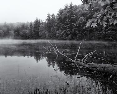 Lake Artubus