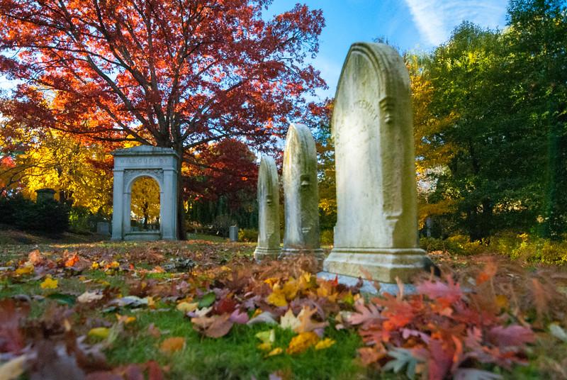 Mt Auburn Cemetery November 2018-97