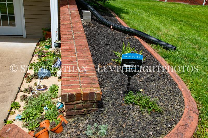Garden41.jpg