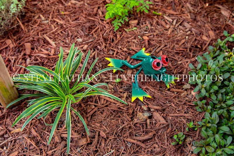 Garden24.jpg