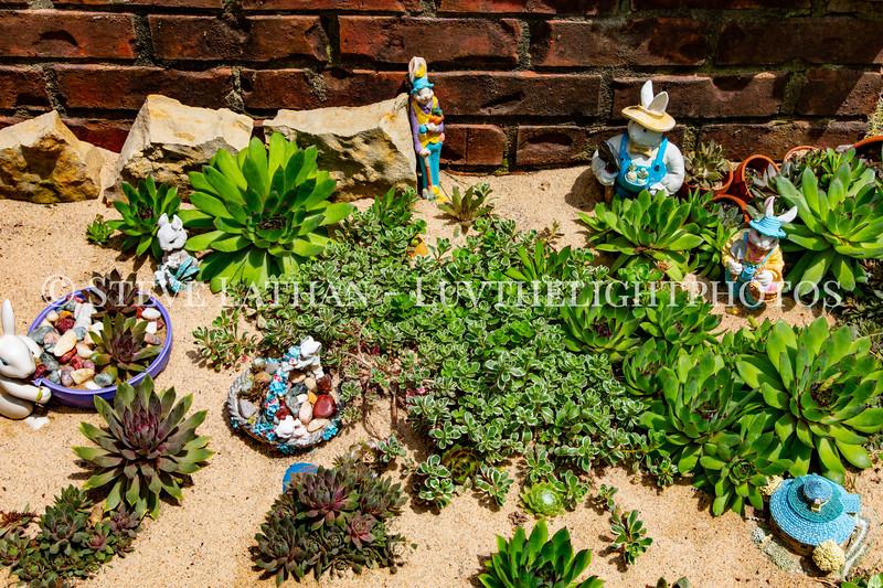 Garden40.jpg