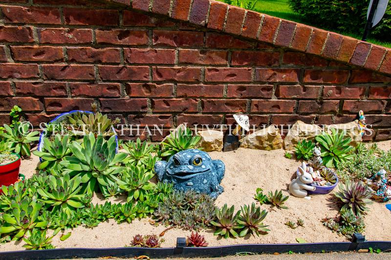 Garden35 copy.jpg