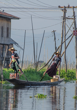 Rowers at Inle's lake floating villages