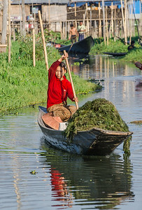 Transporting seaweed for making above water gardens