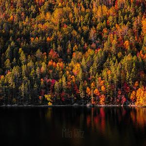 Autumn in Bodø