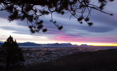 Bodø evening