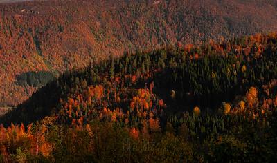 Norland. Autumn