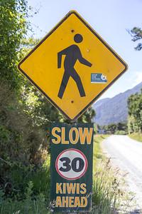 Kiwis ahead ...