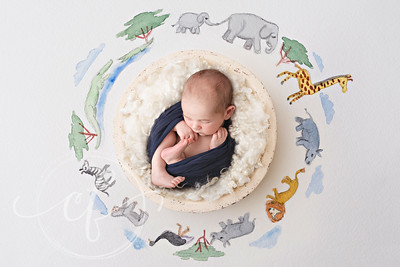 Digital Backdrop Fine Art Newborn Photoshoot