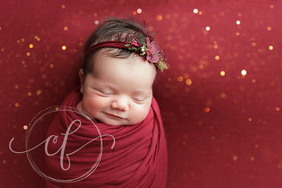 Christmas Newborn Photo