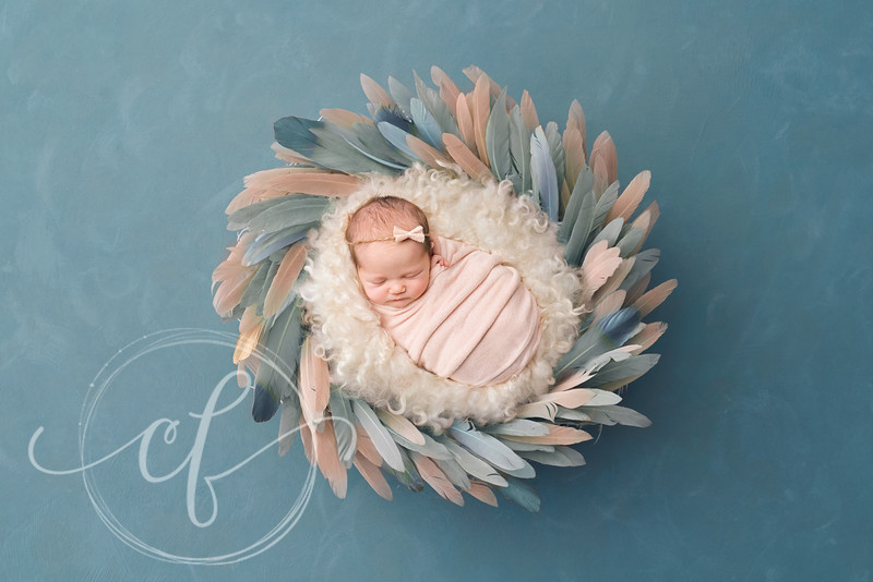 Digital Backdrop Newborn Photoshoot