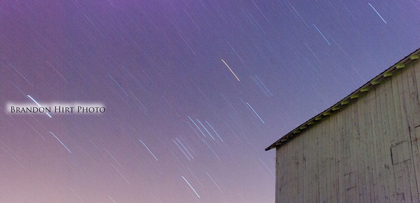 Grain Stars