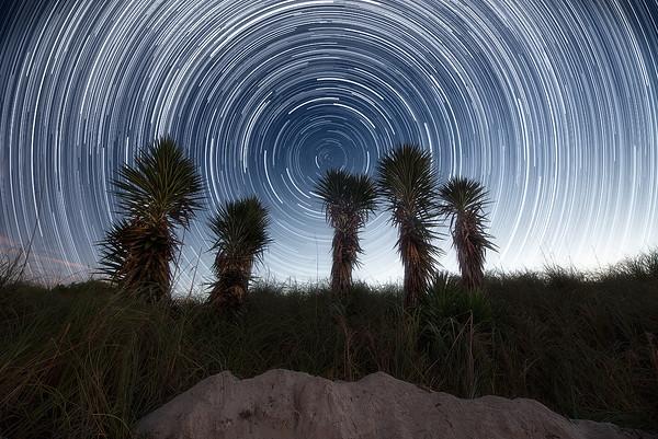 Star Trails over South Pointe Park at Miami Beach, Florida