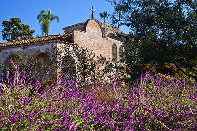 San Juan Capistrano, California Lilacs at the Mission San Juan Capistrano.