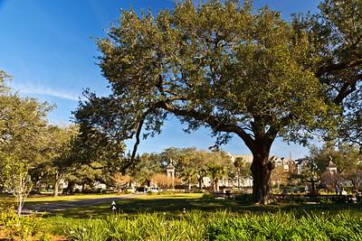 New Orleans, Louisiana Audubon Park along St. Charles Avenue in New Orleans.