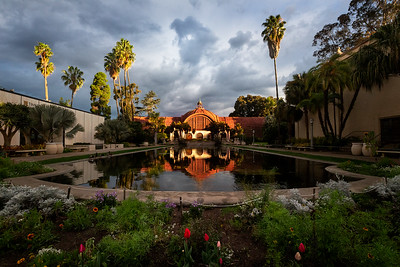 California, San Diego: A stormy morning at the reflecting pool at the Botanical Gardens in Balboa Park. One of the most photographed spots in San Diego, the historical building and its lily pond were built for the 1915-16 Exposition. The lath structure is one of the oldest lath structures in the world.