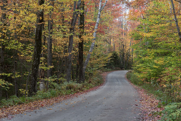 Autumn Road in Vermont