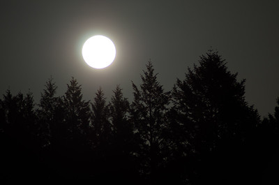 Super Moon, Sonoma County, CA