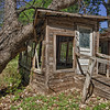 Tree Crash Abandoned Cabin