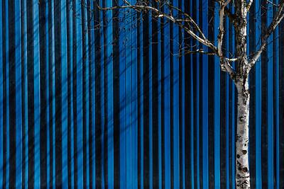 Exterior contemporary art