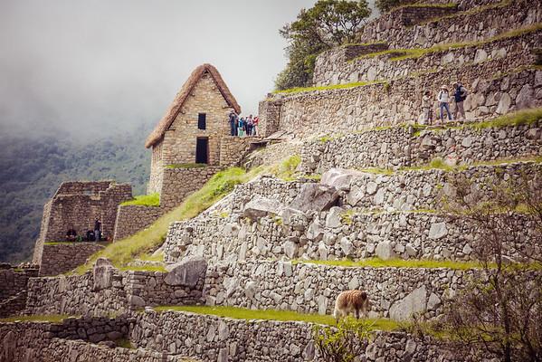 Machu Picchu Inca site