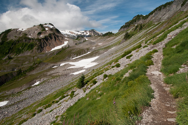 Ptarmigan Trail at Mt Baker