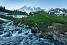Mt Rainier Paradise Valley